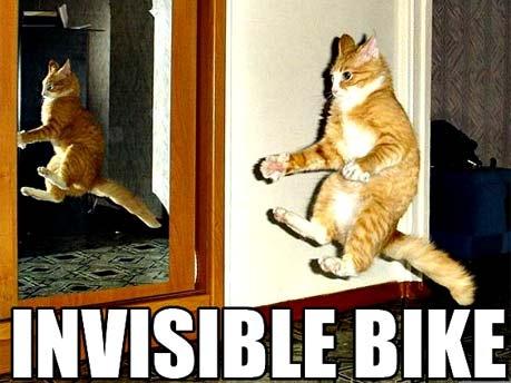 Katze in der Luft vor dem Spiegel