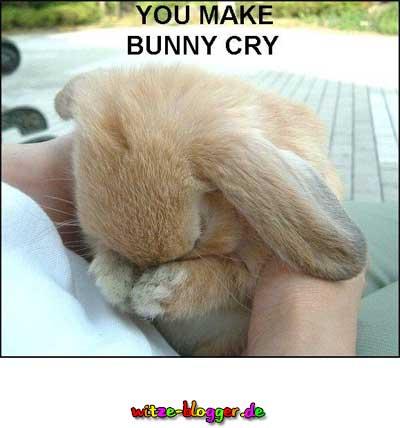 Weinendes Häschen
