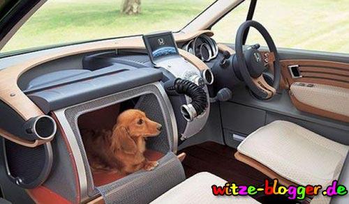 Auto Hundfach