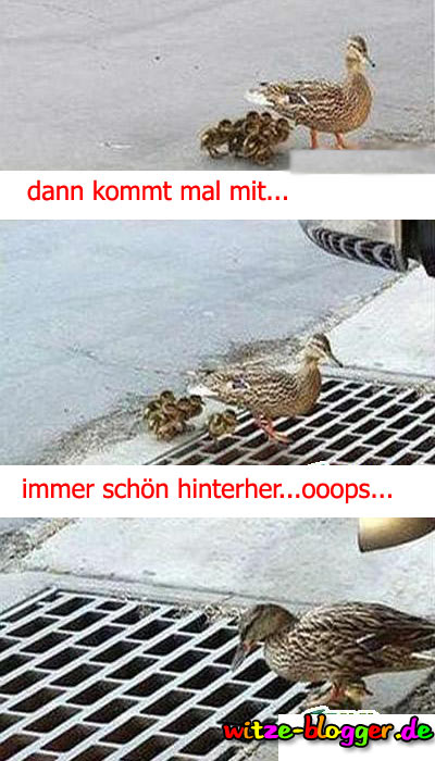 Ente mit Kinder